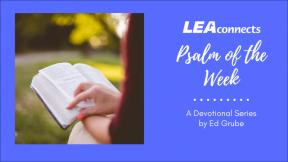 Reflections on the Good Shepherd